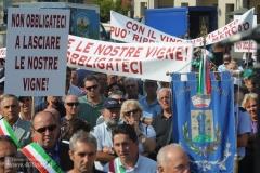 Protesta Viticoltori
