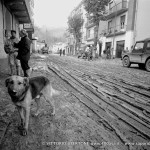 alluvione_canelliUBE044