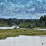 2 settembre 2017 Asti fiume Tanaro - fotografia di Vittorio Ubertone