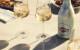 748252-3_martini_asti_outdoor_product_wine_glass