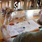 progetto-vino_fabrizioroberto_-26
