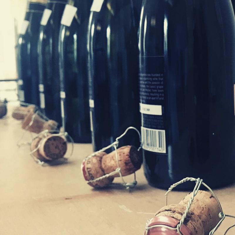 bottiglie-concorso-bolle